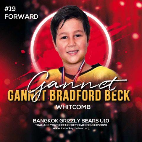 Gannet Bradford Beck  Whitcomb
